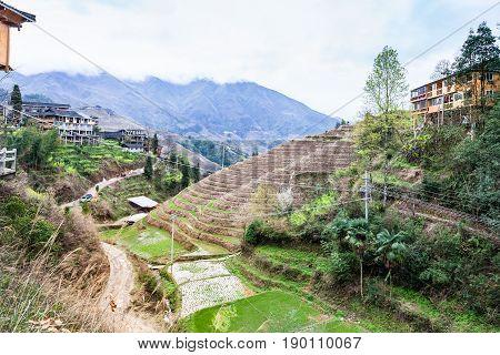 Dazhai Village In Area Longsheng Rice Terraces