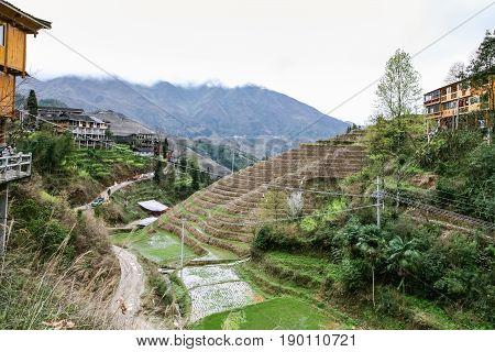 Path To Dazhai Village In Longsheng Rice Terrace