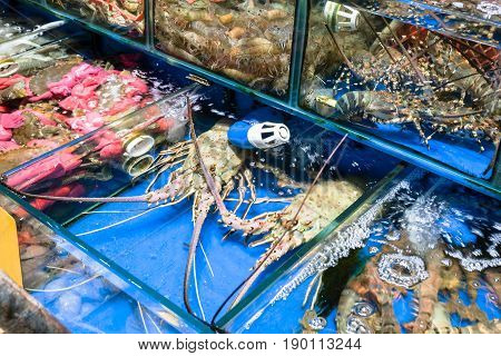 Crabs, Spiny Lobster In Fish Market In Guangzhou
