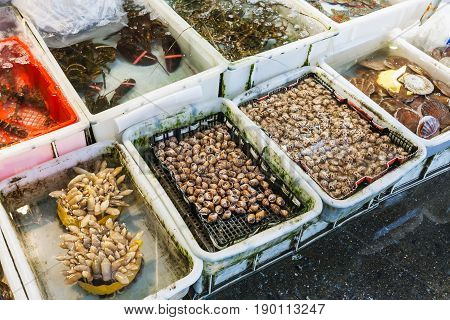Calms And Lobsters In Fish Market In Guangzhou