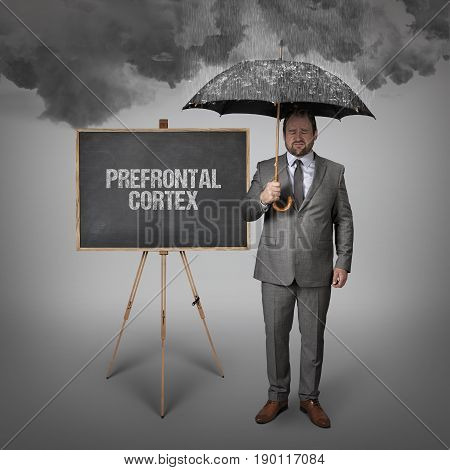 prefrontal cortex text on blackboard with businessman holding umbrella