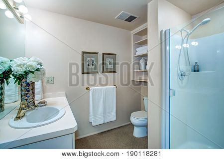 Newly Remodeled Bathroom With Neutral Walls