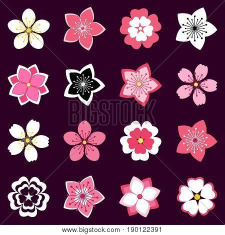 Set of beautiful stylized pink white sakura blossom - japanese cherry tree. Stylish spring or summer flowers isolated on black background. Modern floral design elements icons. Vector illustration