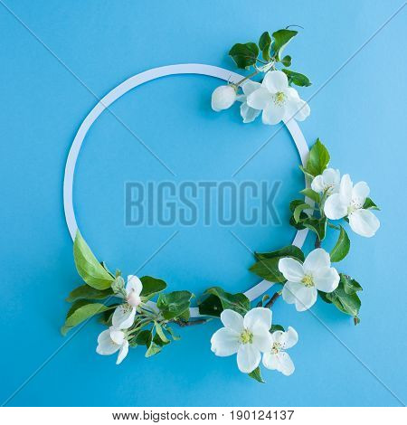 Round Frame With Blossom Apple On Blue Background