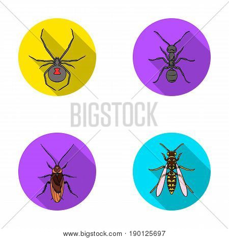 Spider, ant, wasp, bee .Insects set collection icons in flat style vector symbol stock illustration .