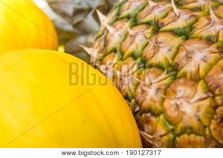 Ripe pine-apple bunch of yellow melons on farmer's market Asia skin texture close up vibrant colors