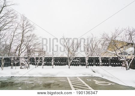 Parking cars covered with white  snow