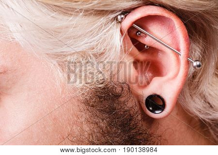 Pierced Man Ear, Black Plug Tunnel, Industrial And Rook