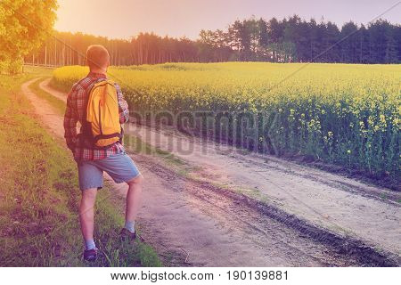The road goes into distance of meadow at sunset, a tourist is walking along the road with a backpack
