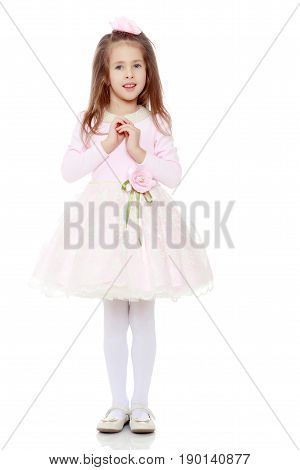 Dressy little girl long blonde hair, beautiful pink dress and a rose in her hair.She folded her arms around his chest.Isolated on white background.
