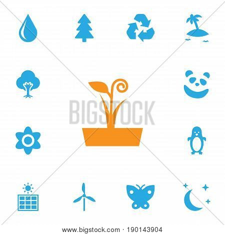 Set Of 13 Natural Icons Set.Collection Of Tree, Polar Bird, Bear And Other Elements.