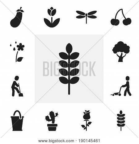 Set Of 12 Editable Gardening Icons. Includes Symbols Such As Cacti, Beauty Flower, Berry And More. Can Be Used For Web, Mobile, UI And Infographic Design.