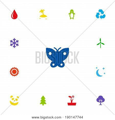 Set Of 13 Natural Icons Set.Collection Of Tree, Moth, Solar And Other Elements.