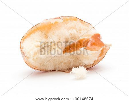 Eleagnus on a white background . A photo
