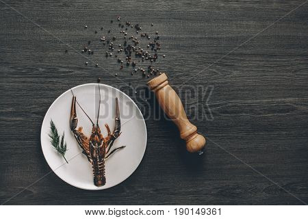 Food concept. Big fresh alive crayfish on white plate with green herb in restaurant. Black and white pepper grains around. Gray wooden background. Instagram vintage toning effect. Top view. Copy space