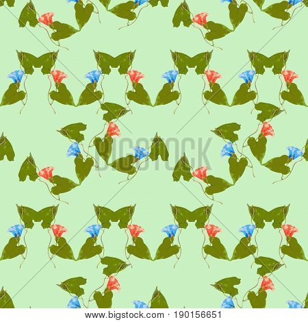 Larger bindweed. Texture of flowers. Seamless pattern for continuous replicate. Floral background photo collage for production of textile cotton fabric. For use in wallpaper covers.