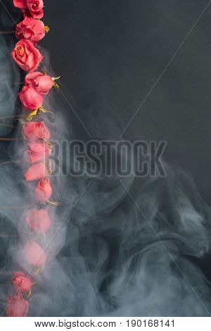 goth style dry red roses, black background with smoke