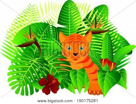 Tropical Rain Forest Jungle Plants with Leaves Flowers and Tiger Cub Isolated on White Background Color vector  Illustration