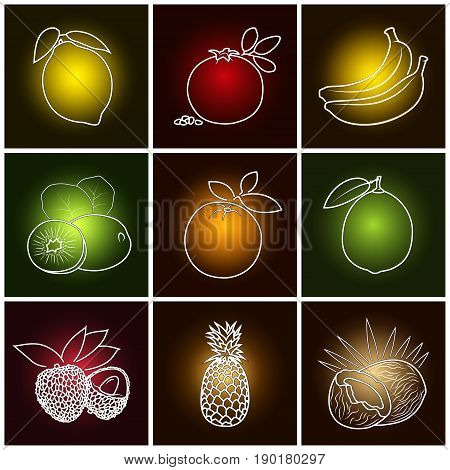 Tropical Citrus Fruit Icons Lemon Orange Coconut and Lime Pomegranate with Pineapple Banana Lichee and Kiwifruit on Colored Background Thin Line Style Design Vector Illustration