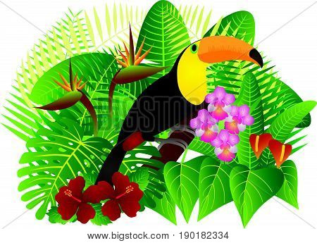 Tropical Rain Forest Jungle Plants with Leaves Flowers and Toucan Bird Isolated on White Background Color vector  Illustration