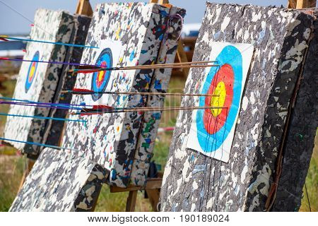 The arrow pierced the center of the paper target of concentric circles of different colors. Archery.