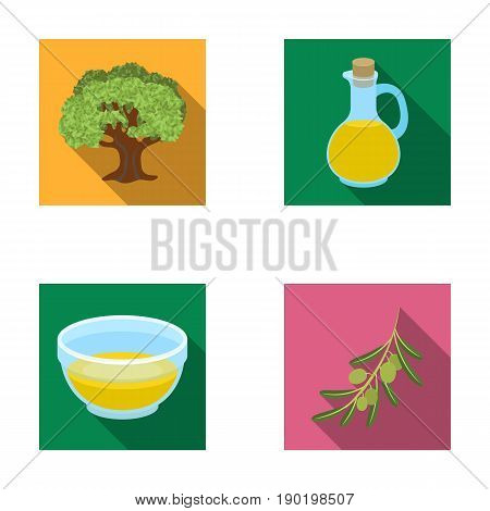 An olive tree, a branch with olives, a vessel and a jug of oil. Olives set collection icons in flat style vector symbol stock illustration .