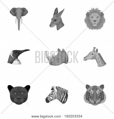 A set of icons of wild animals. Predatory and peaceful wild animals.Realistic animal icon in set collection on monochrome style vector symbol stock  illustration.