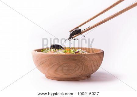 Main Course Cockroach