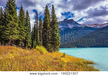 Lake in the Rocky Mountains. The smooth turquoise water among the yellowed autumn forest. The concept of eco-tourism and active recreations