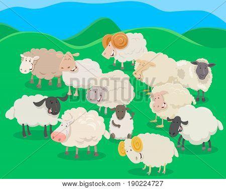 Cartoon Illustration of Flock of Sheep Farm Animal Characters