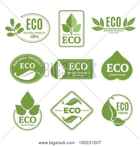 Labels or eco logo set with plants and green leafs. Vector icons isolate on white background. Leaf eco label, illustration of natural eco organic symbol sticker