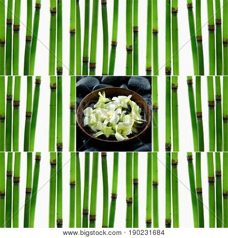 Still life with young bamboo sticks with, orchid in bowl ,black stoneson mat