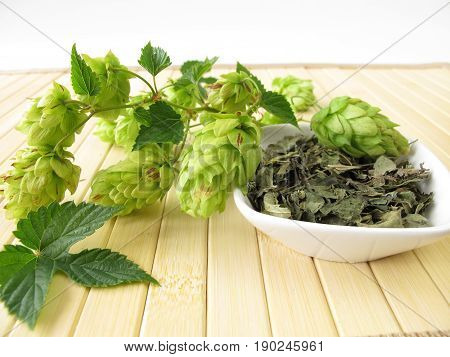 Loose tea with hops and fresh hops cones