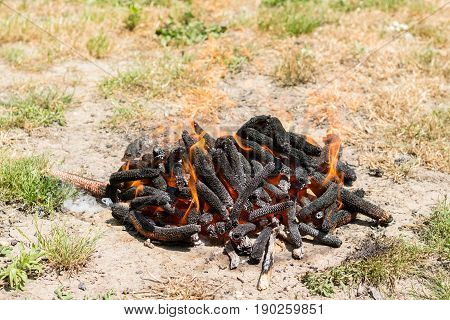 Burning Fire In Flames And Embers Preparing For Barbecue On The Grass Land