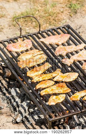 Chicken Breasts And Pork Meat Frying On The Barbecue Grill
