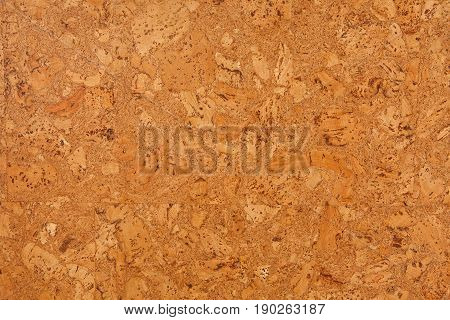 Cork board texture background. Natural surface pattern