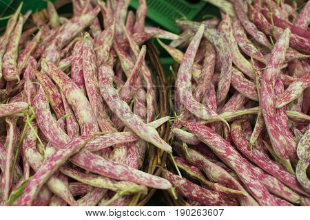 Kidney bean is a variant of bean. In different languages it is also called Borlotti bean or Roman bean paste. It was developed in Italy. It is still used in Italian Spanish Turkish and Greek cuisines.