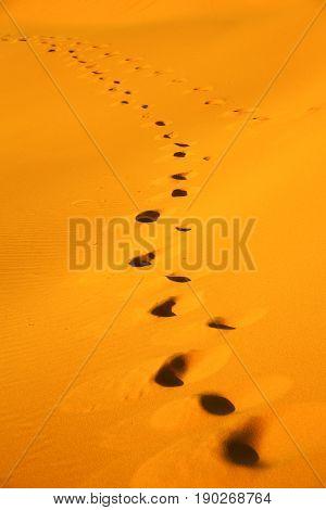 Brown Sand  Sahara Morocco Desert