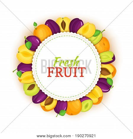 Round colored frame composed of apricot plum. Vector card illustration. Fruit label. Circle apricotss plums label fruit whole and sliced appetizing looking for packaging design of healthy food, detox