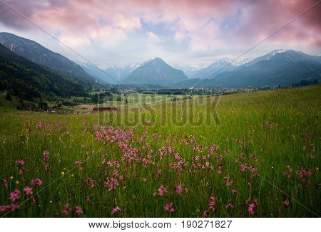 Allgau Landscape With Wildflower Meadow At Sunset