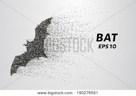 Bat Out Of Particles. Bat Consists Of Circles And Points. Vector Illustration.