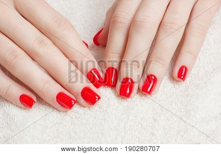 Manicure - Beauty treatment photo of nice manicured woman fingernails with red nail polish. Top view