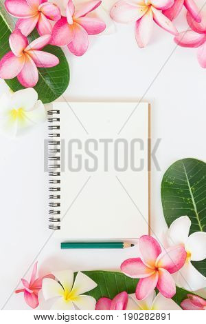 Tropic flat lay top view tropical summer botanical concept with note book palm leaves and plumeria flowers on white