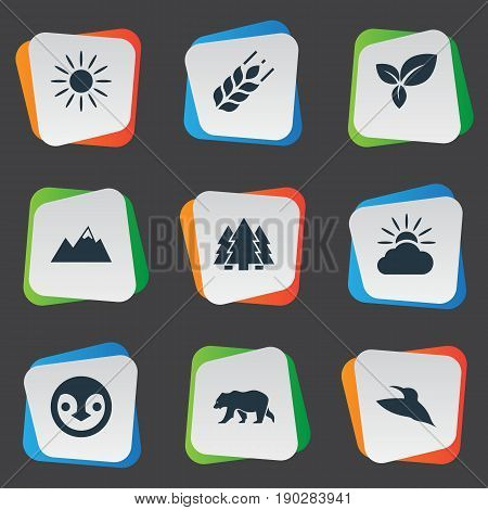 Vector Illustration Set Of Simple Geo Icons. Elements Bird, Grain, Pinnacle And Other Synonyms Wheat, Corn And Woods.