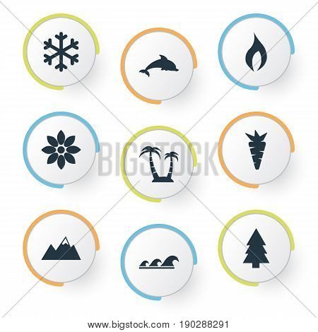 Vector Illustration Set Of Simple Geo Icons. Elements Bloom, Grampus, Carrot And Other Synonyms Ignite, Flower And Grampus.