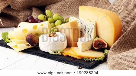 cheese plater mit different brie, gaudy selection