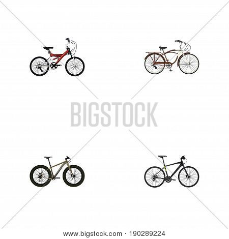 Realistic Hybrid Velocipede, Adolescent, Journey Bike And Other Vector Elements. Set Of Bicycle Realistic Symbols Also Includes Training, Teenager, Hybrid Objects.