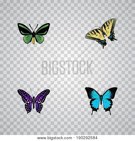 Realistic Checkerspot, Polyommatus Icarus, Papilio Ulysses And Other Vector Elements. Set Of Moth Realistic Symbols Also Includes Butterfly, Bluewing, Green Objects.