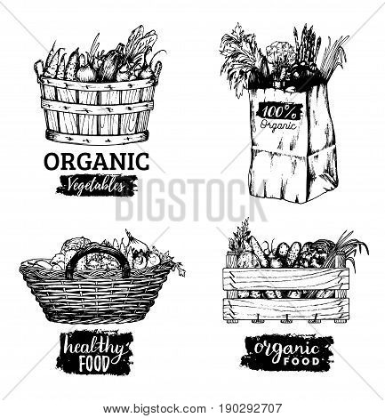 Vector organic vegetables logotypes set. Farm fresh eco products illustrations. Hand sketched various containers with greens, baskets, box and bag.