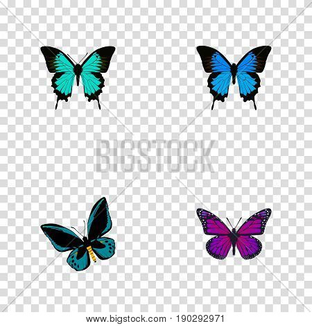 Realistic Purple Monarch, Copper, Common Blue And Other Vector Elements. Set Of Beauty Realistic Symbols Also Includes Hairstreak, Violet, Purple Objects.